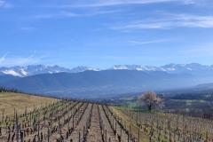 Chaine de Belledonne depuis les vignes de Chignin - iPhone XS Max - ISO 16 - f/2,4 - 1/2000 s