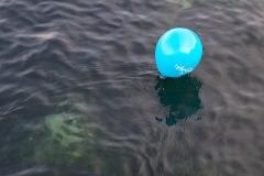 Ballon sur l'eau