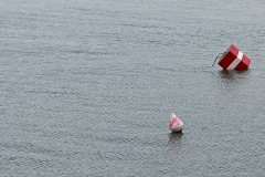 Bouées sur le lac léman