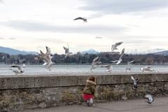 Petite fille jouant avec les oiseaux