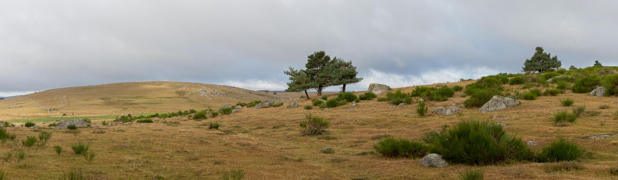 Panoramique plateau de l'Aubrac