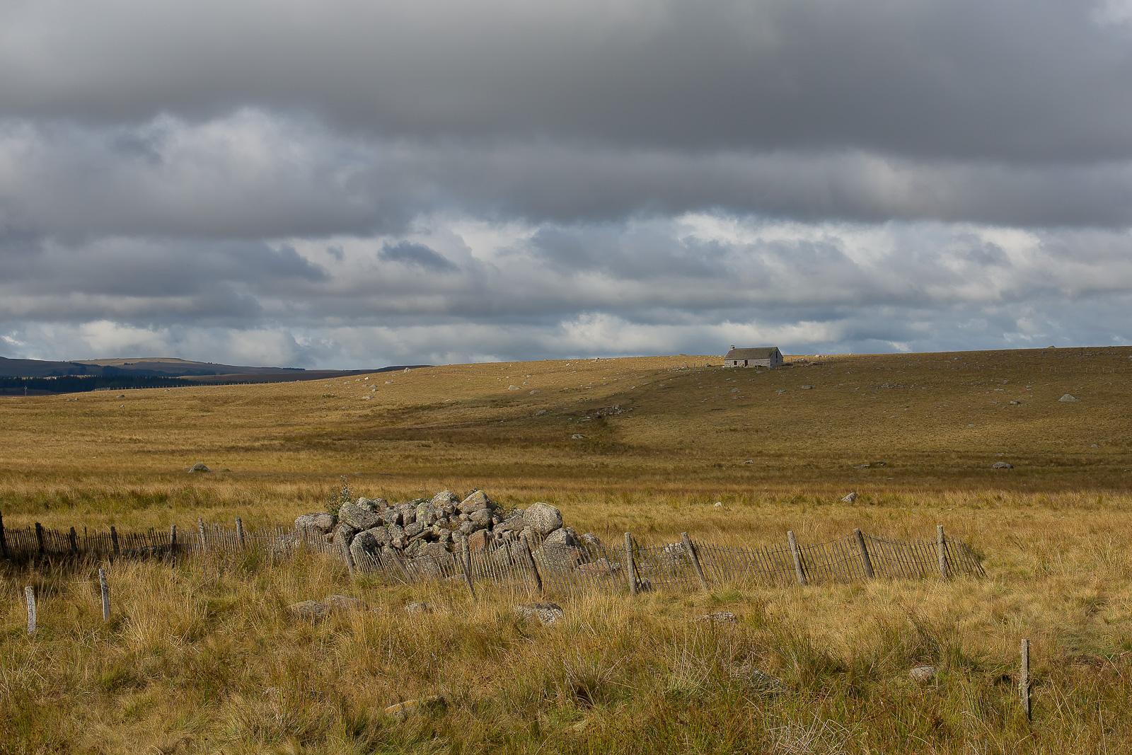 Tour des monts d'Aubrac paysage