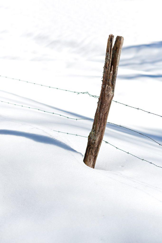 Clôture sous la neige