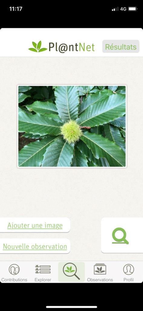 Plantnet - Option photo