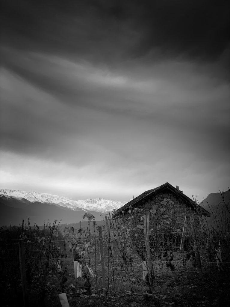 Projet photo 365 - Cabane dans les vignes