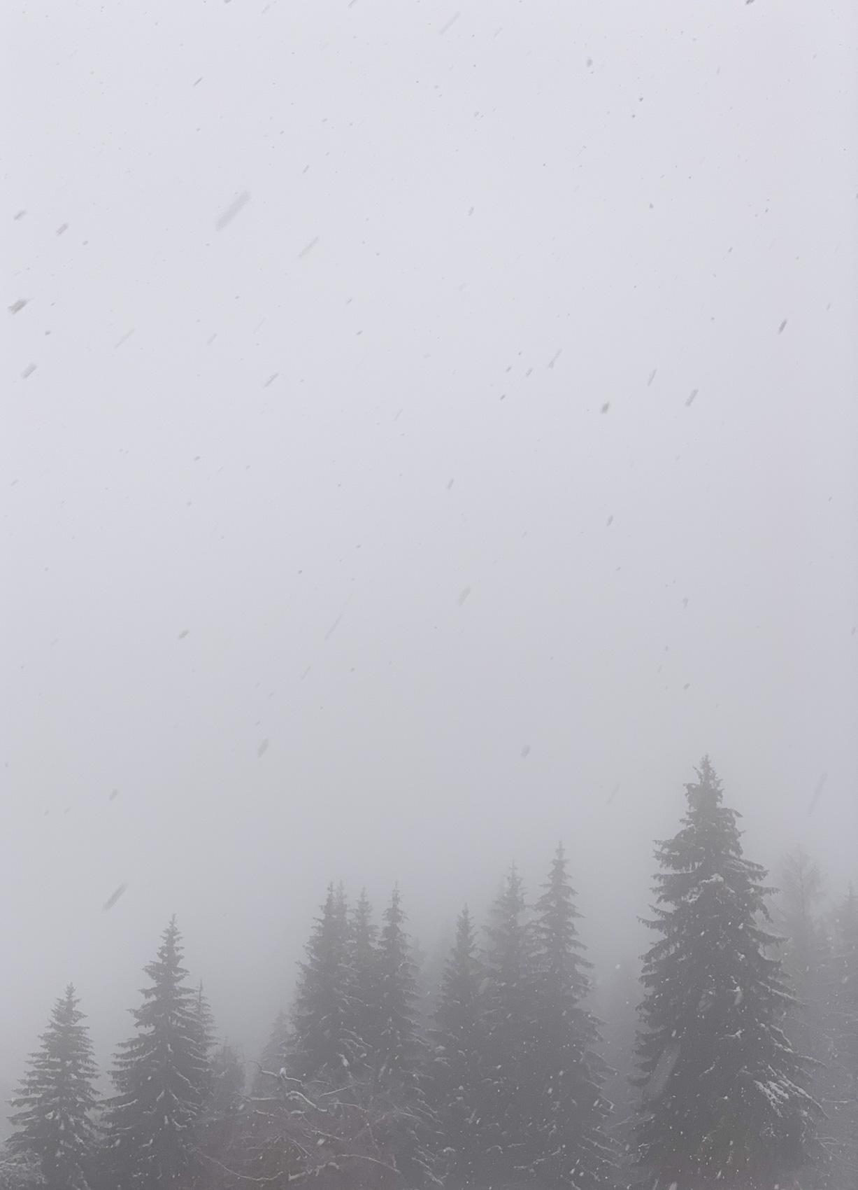 Neige aux Carroz d'Araches