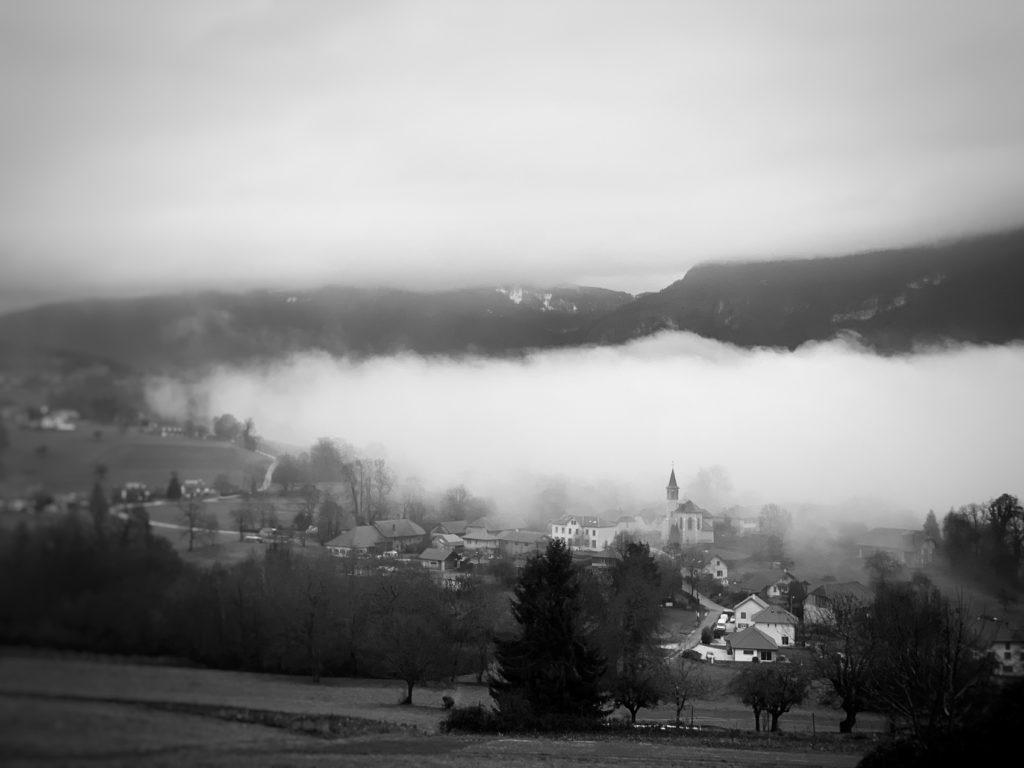 Projet 365 2018 - Epersy dans le brouillard
