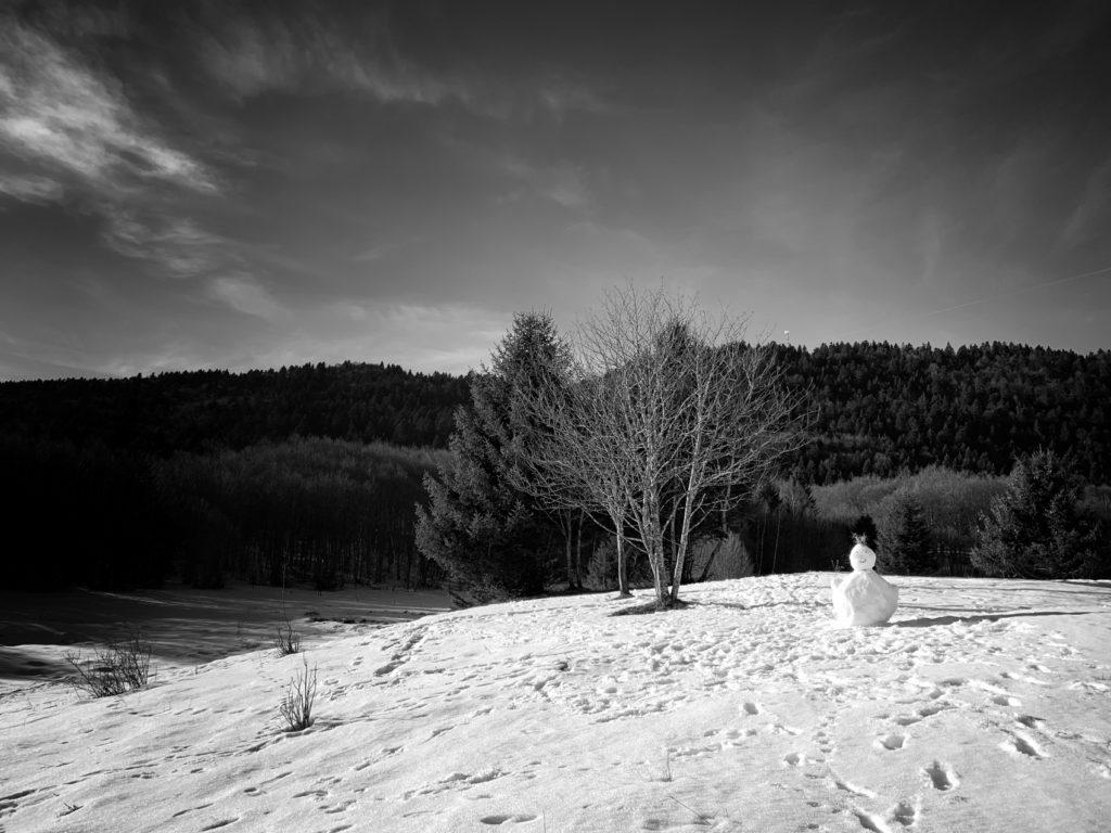 Projet 365 2018 - Petit bonhomme de neige