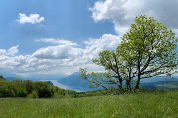 Projet 52 - Panoramique montagne de Cessens