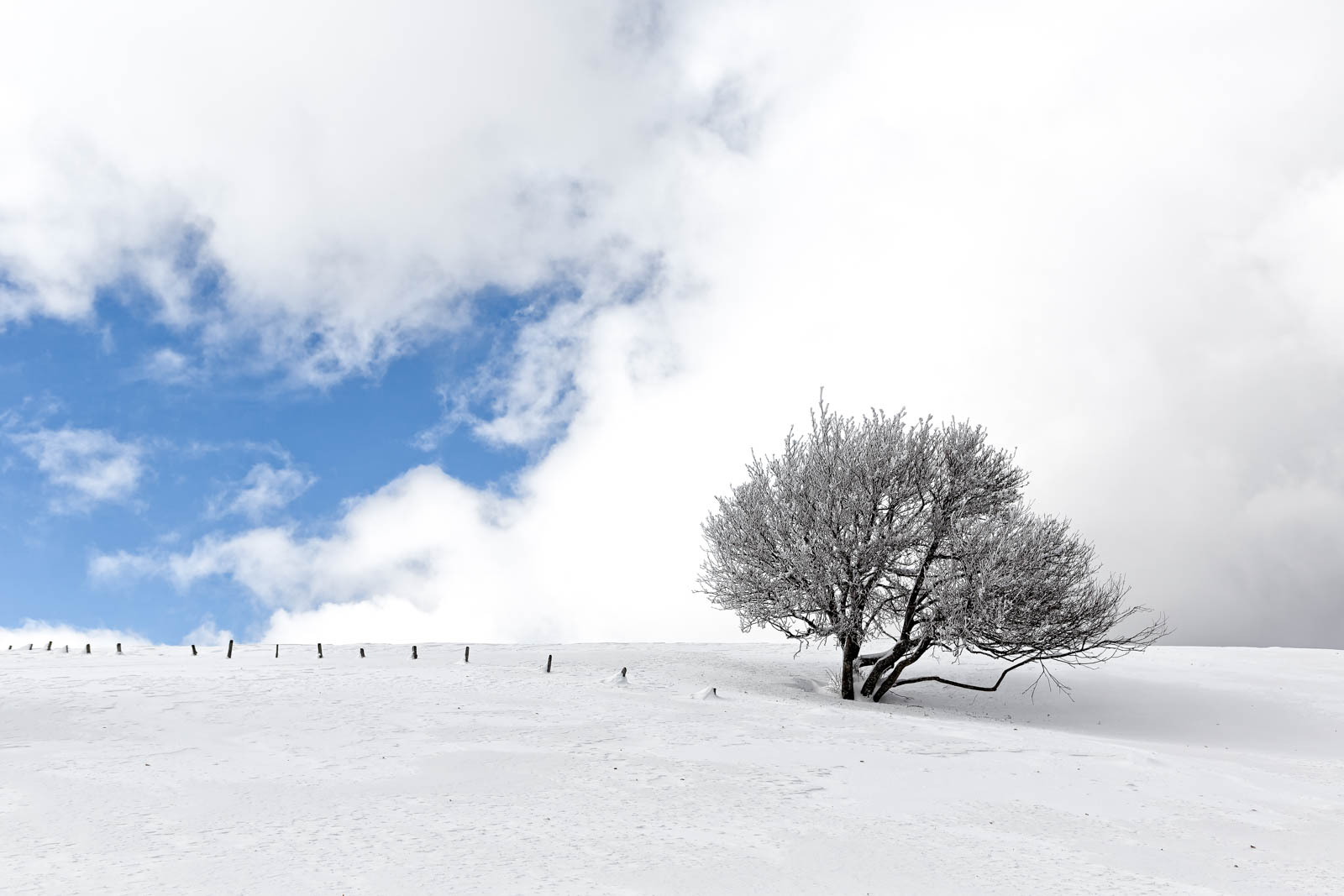 Paysage de Savoie sous la neige