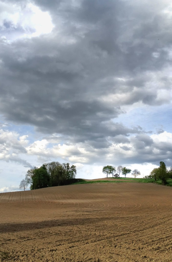 iPhoneographie - Paysage campagnard