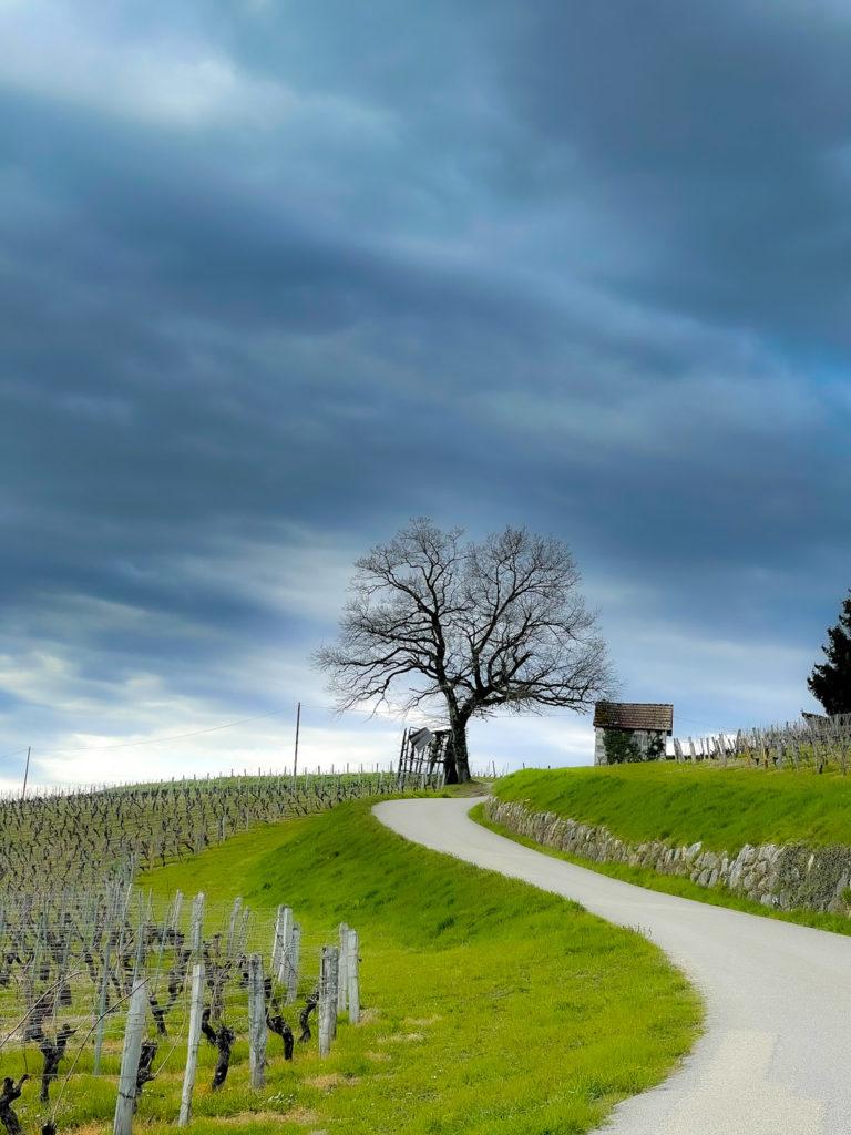 Sur les routes de Savoie